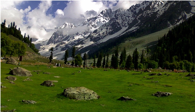 sonmarg-meadow